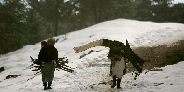 Women carry firewood through a forest in the snow-covered Middle Atlas region of Morocco near Ifrane...