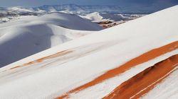 La neige sur les dunes de Ain Sefra fait le bonheur des