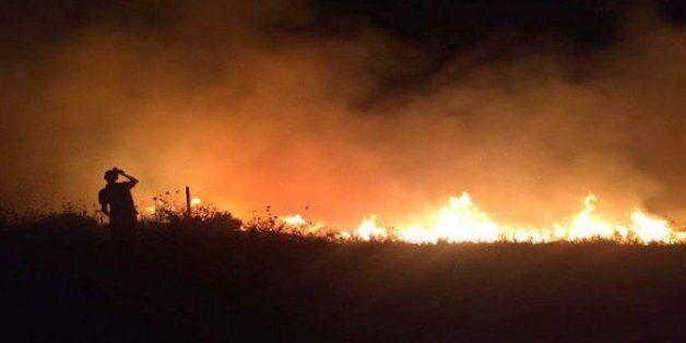 Forêts: les feux ont ravagé près de 54.000 hectares en