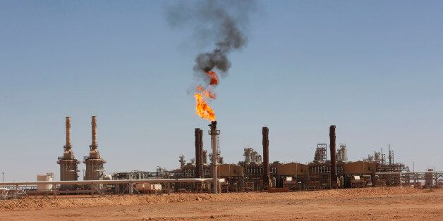 A general view of Tiguentourine Gas Plant in In Amenas, 1600 km (994 miles) southeast of Algiers, October...