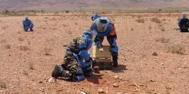 Mines antipersonnel/Convention d'Ottawa: l'Algérie félicitée à
