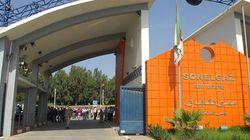 Algérie: Le SNATEG organise un rassemblement contre la Charte du