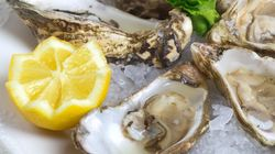 Le Département de la Pêche maritime interdit la consommation de coquillages dans la région