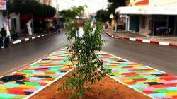 Les habitants de Ouardanine se mobilisent pour embellir la ville et restaurer des salles de classe (PHOTOS,
