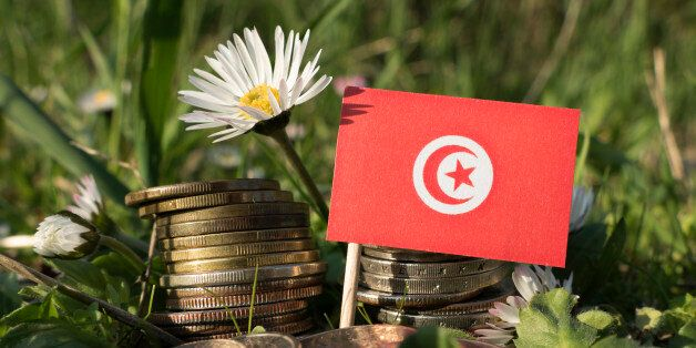 Tunisian flag with stack of money coins with grass and