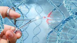 Pour la première fois des scientifiques ont modifié l'ADN d'un homme