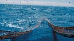 Mostaganem : un deuxième corps retrouvé en mer en moins de 24