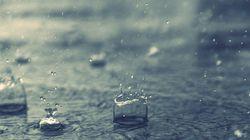 Averses de pluies sur les wilayas côtières jusqu'au