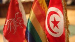 Abolition de l'homophobie à l'occasion de la visite du président du parlement européen en