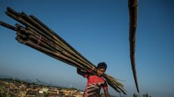 La Birmanie récolte les champs des Rohingyas réfugiés au
