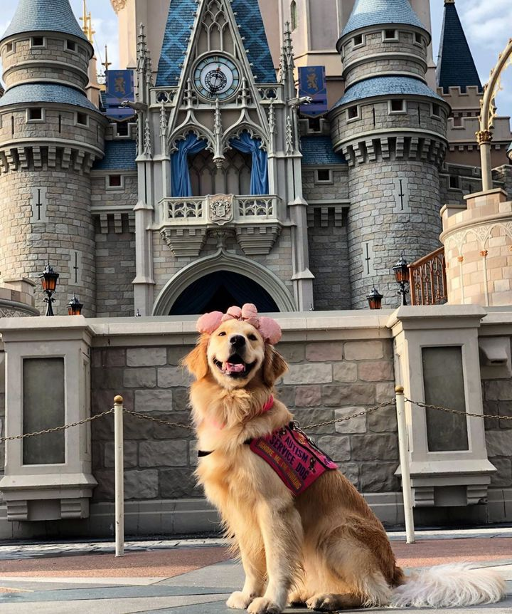 Service dog Nala in one of her favorite places: Disney World.