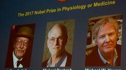 Le Nobel de médecine à trois Américains spécialistes de l'horloge