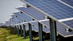 Pour la première fois en Tunisie, une centrale fonctionnant à l'énergie solaire pour le séchage de produits