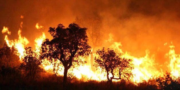 A fire burns late 01 September 2007 night in Tzarift, near Tlemcen, north-west of Algeria. Cooler temperatures...