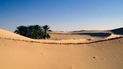 Tourisme au Sahara : un programme varié mis en place pour la