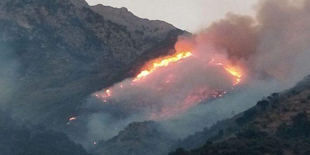 Tizi-Ouzou: plus de 30 départs de feux
