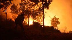 Sonelgaz: des réseaux électriques gravement endommagés par les feux de