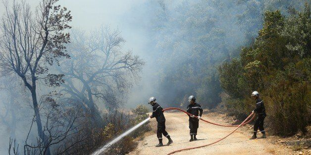 JENDOUBA, TUNISIA - AUGUST 2: Firefighters try to extinguish a forest fire in Jendouba, Tunisia on August...
