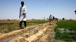 Changement climatique: l'agriculture africaine menacée par le réchauffement de la