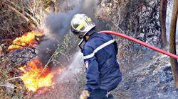 Feux de forêts: plus de 6.000 ha touchés depuis début
