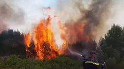 Tanger: Un incendie se déclare dans la forêt de Mediouna sans faire de