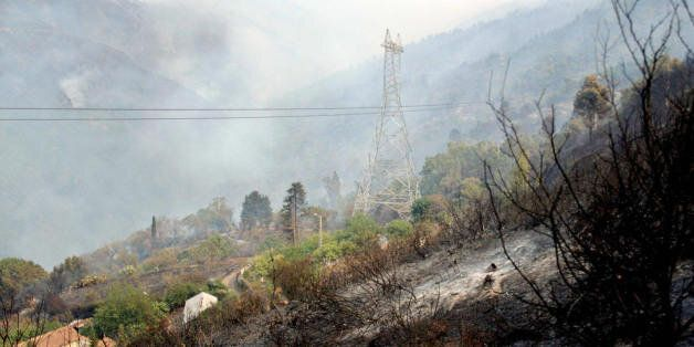 Trees and bushes burn around the village of Chrea, in the Blida Wilaya (district), some 50 kilometers...