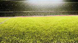 Football : une nouvelle pelouse