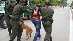 Trois éléments de soutien aux groupes terroristes arrêtés à Blida