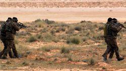 Enlèvement du berger Khelifa Soltani : Poursuite des opérations de