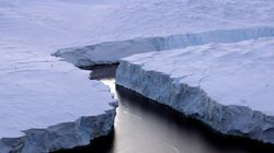 Le changement climatique peut être atténué par les aires marines