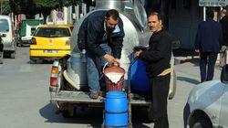 Tunisie : L'exportation de produits laitiers affiche un nouveau record en