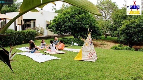 À la rencontre de Amira Hammami: L'art pour pousser les