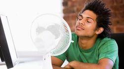 Pendant cette vague de chaleur, cinq choses à savoir pour maîtriser votre