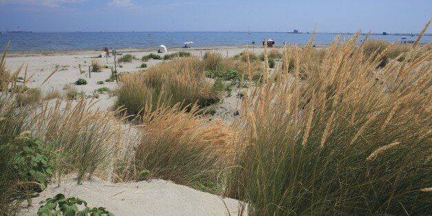 UNSPECIFIED - MAY 23: Italy - Veneto Region - Venice. Lido. Dunes at WWF protected Alberoni beach (Photo...