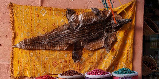 Une étude met en garde contre la vente illégale de reptiles dans les souks