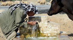 Pénurie d'eau en Tunisie: Quelle