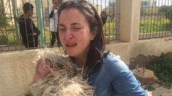 La police municipale réagit à l'abattage de Mojito, le caniche achevé devant le domicile de ses propriétaires à