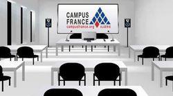 21 000 étudiants Algériens ont postulé auprès des universités françaises en