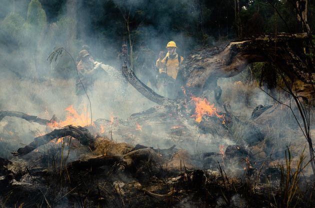La violence des incendies et la pression internationale ont contraint les autorités brésiliennes...