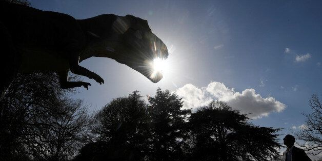 A man views an animatronic life-size dinosaur ahead of an interactive exhibition, Jurassic Kingdom, at...