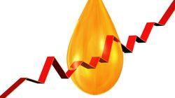 Le pétrole en hausse, l'Opep se tient à son