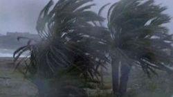 Rafales de vent: 26 interventions de la Protection