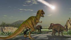 Selon cette nouvelle théorie, l'extinction des dinosaures est également due à leurs