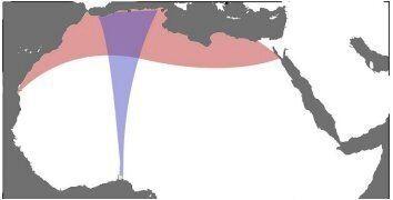 L'Algérie à la croisée des