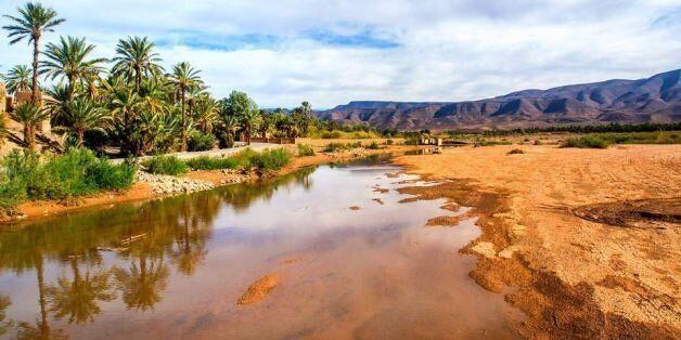 A Tafilelt, la plus grande oasis au monde est menacée par le changement