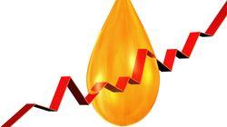 Le pétrole rebondit fortement à New York, l'Opep restant au centre du