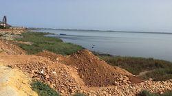 Un désastre écologique au lac de Ghar el