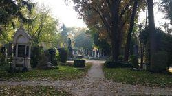 Zentralfriedhof, un cimetière unique