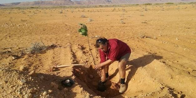 De la verdure en plein désert: Le défi de Hamadi Ben