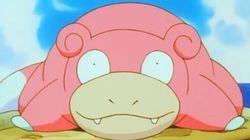 Pokémon Go est enfin disponible officiellement au